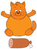 Fat cat and delicious sausage Royalty Free Stock Images