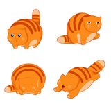 Fat cat icons Royalty Free Stock Images