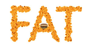 Fat cells concept. Word fat isolate on white background Royalty Free Stock Images