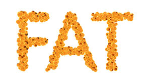 Fat cells concept. Word fat isolate on white background Royalty Free Stock Photo
