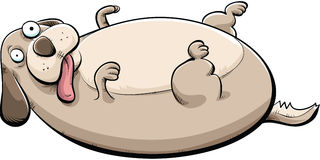 Fat Dog. Cartoon of a big, fat dog lying on his back Royalty Free Stock Photos