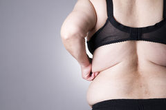 Fat female body with copy space. Back view Stock Images
