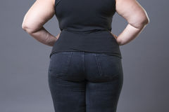 Fat female buttocks in blue jeans, overweight woman body closeup. Gray studio background Royalty Free Stock Photo