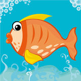 Fat Fish. Vector illustration of a fat fish Stock Photography