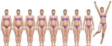 Fat Fit Before After Diet Weight Success Woman. Woman diets from fat to fitness in before after frontal 3D render series Royalty Free Stock Image