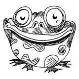 Fat frog Royalty Free Stock Photo