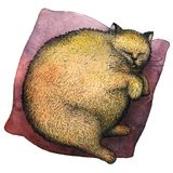 A fat ginger cat sleeping on a pillow. Watercolor illustration. A fat ginger cat sleeping on a pillow. Drawn by ink pen and watercolor on paper Royalty Free Stock Photos