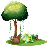 A fat green monster sleeping under the tree Royalty Free Stock Photography