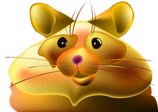 Fat hamster Royalty Free Stock Photo