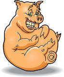 Fat and Happy Pig. This is a fat and happy pig who has eaten a little too much Royalty Free Stock Image