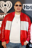 Fat Joe royalty free stock photos