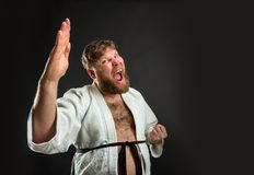Fat karate fighter Royalty Free Stock Image