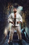 Fat karate fighter Stock Image