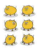 Fat kittens Royalty Free Stock Photos