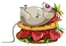 Fat lazy mouse. Lazy sleeping mouse cartoon character lying at cracker sandich with strawberry Stock Photo