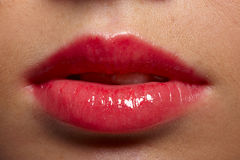 Fat lips Royalty Free Stock Photography