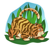Fat little tiger. Hand drawn picture of a cute fat little tiger sneaking in the jungle, cartoon  illustration Royalty Free Stock Image