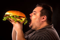 Fat man eating fast food hamberger. Breakfast for overweight person. Diet failure of fat man eating fast food hamberger. Breakfast for overweight person who stock photography