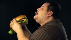 Fat man eating hamberger fast food . Breakfast for overweight person. stock footage