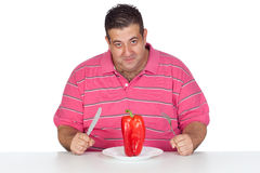 Fat man eating a red pepper Stock Images