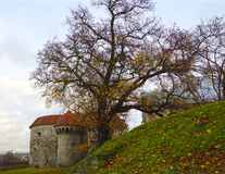 Fat Margaret Tower in Tallin, Estonia Royalty Free Stock Photography