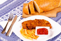 Fat meal. Fried and fat unhealthy meal Stock Photos