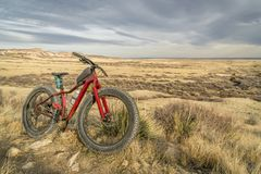 Fat mountain bike on a trail in northern Colorado Royalty Free Stock Image