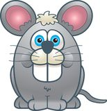 Fat Mouse. A grey fat mouse smiling Royalty Free Stock Photo