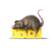Fat mouse Royalty Free Stock Images