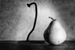 Fat pear makes a thin nail shadow on wall. In spotlight gunge artistic conversion Stock Image
