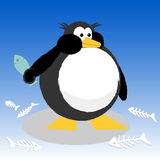 Fat Penguin Royalty Free Stock Photos