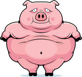 Fat Pig. A cartoon fat pig smiling and very obese Stock Images