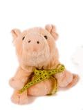 Fat Pig Stock Image