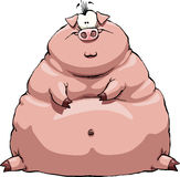 Fat pig. Thick pig on a white background, vector Stock Image