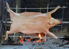 Fat pig while it is cooked in huge spit of restaurant Royalty Free Stock Photos