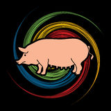 Fat Pig. Standing designed on spin wheel background graphic vector Royalty Free Stock Photography
