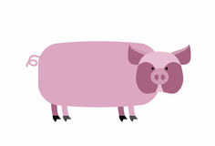 Fat pig on a white background. Farm animal. Vector illustration Royalty Free Stock Image