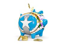 Fat piggy bank with flag of northern mariana islands. And money isolated on white. 3D illustration Stock Photo
