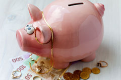 Fat pink saving pig Stock Photo