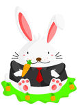 Fat Rabbit Royalty Free Stock Image