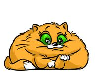 Fat red cat happy cartoon illustration Royalty Free Stock Photo