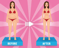 Fat and slim woman in red bikini. Girl before and after weight loss.. Fat and slim woman in red bikini. Girl before and after weight loss. Vector advertising Royalty Free Stock Photo