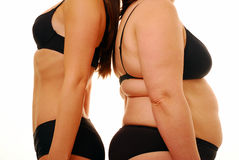 Fat thin people. Fat and thin women standing back to back royalty free stock image