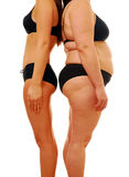Fat thin woman. Portrait of a fat person and a thin person stock images