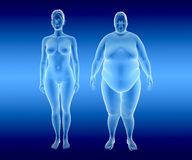 Fat and thin Woman Royalty Free Stock Photography