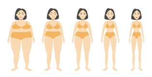 From fat to fit. Woman loosing weight Stock Image