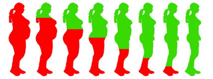 Fat to slim woman weight loss transformation healt. Health risk illustration. Risk reduces as loosing weight and become fully healthy woman. Fat to slim woman Royalty Free Stock Photo