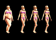 Fat To Thin 2 Stock Photo