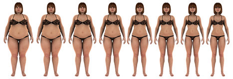 Fat to thin weight loss transformation of a white. 8 steps of a Fat overweight woman losing her weight as she becomes thin, fit girl. Wearing a bikini, white Royalty Free Stock Photography