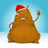 Fat victory/peace santa rodent Royalty Free Stock Photo